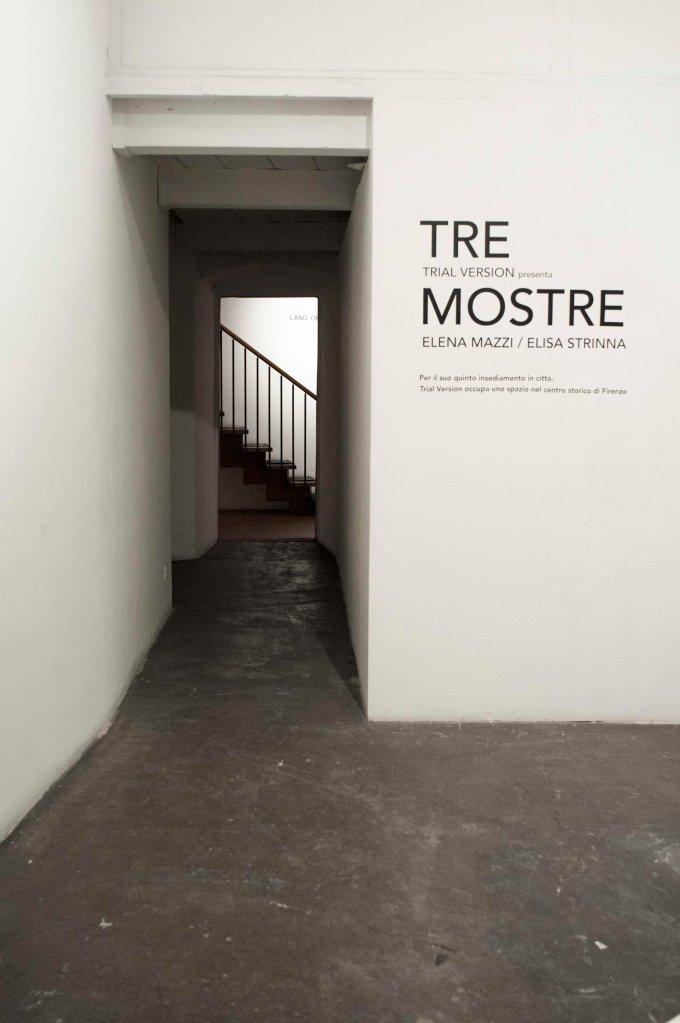 Tre Mostre, Elena Mazzi ed Elisa Strinna, a cura di Trial version, via del Moro 82r, 14-29 Marzo, Firenze
