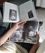 la fase di studio di Elena Mazzi